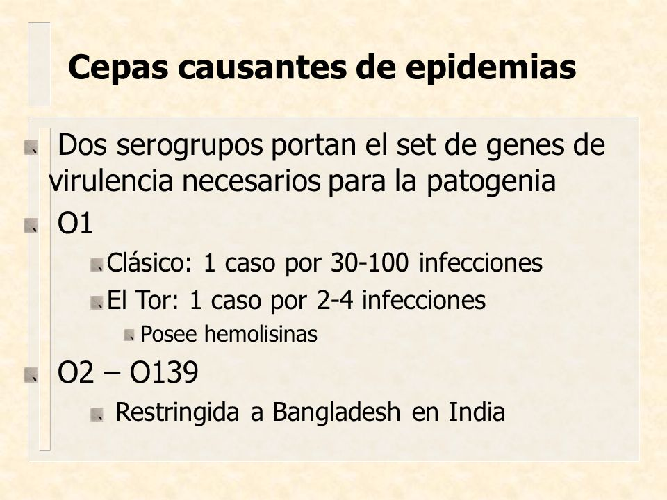 Cepas causantes de epidemias Dos serogrupos portan el set de genes de virulencia necesarios para la patogenia O1 Clásico: 1 caso por 30-100 infeccione
