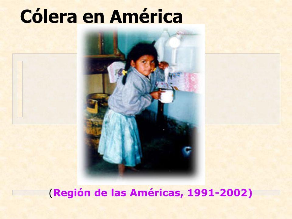Cólera en América (Región de las Américas, 1991-2002)