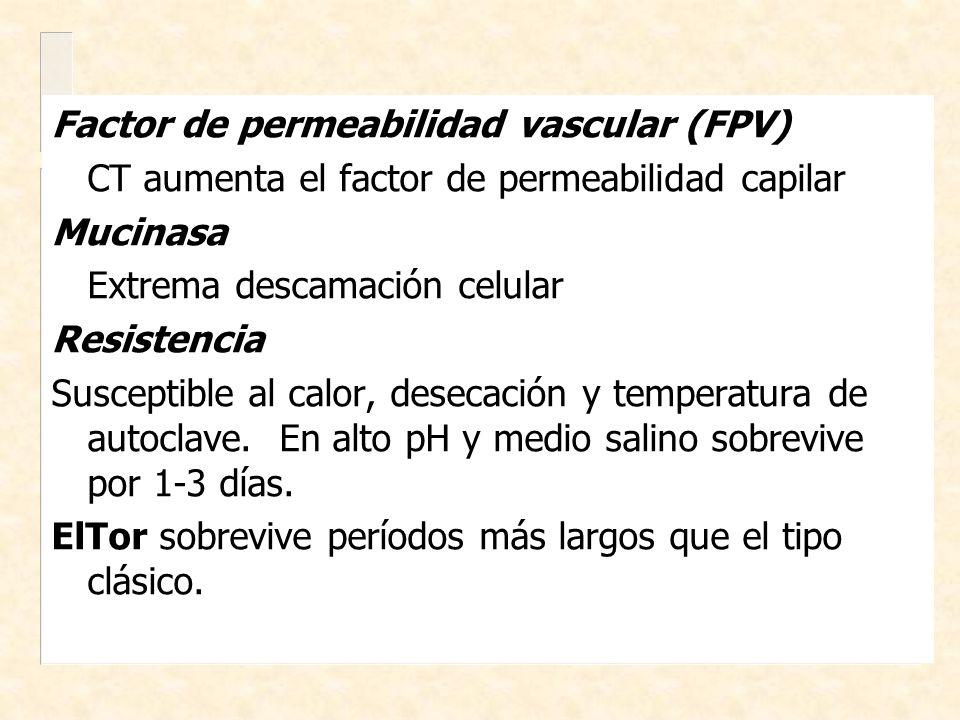 Factor de permeabilidad vascular (FPV) CT aumenta el factor de permeabilidad capilar Mucinasa Extrema descamación celular Resistencia Susceptible al c