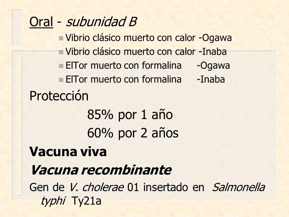 Oral - subunidad B n Vibrio clásico muerto con calor -Ogawa n Vibrio clásico muerto con calor -Inaba n ElTor muerto con formalina -Ogawa n ElTor muert
