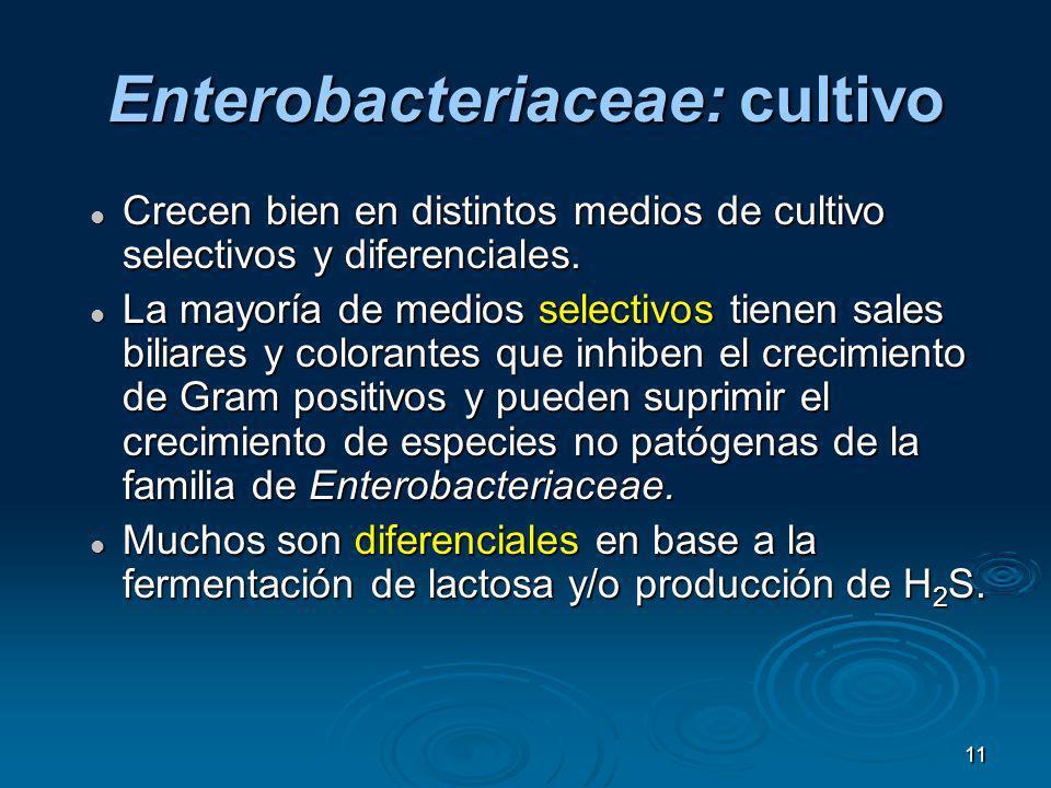 11 Enterobacteriaceae: cultivo Crecen bien en distintos medios de cultivo selectivos y diferenciales. Crecen bien en distintos medios de cultivo selec