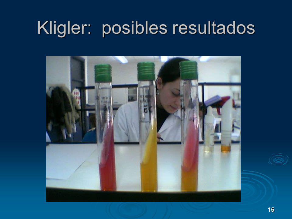 15 Kligler: posibles resultados