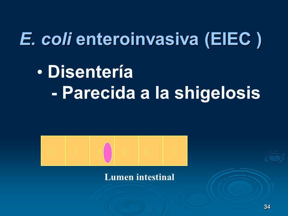 34 Disentería - Parecida a la shigelosis E. coli enteroinvasiva (EIEC ) Lumen intestinal