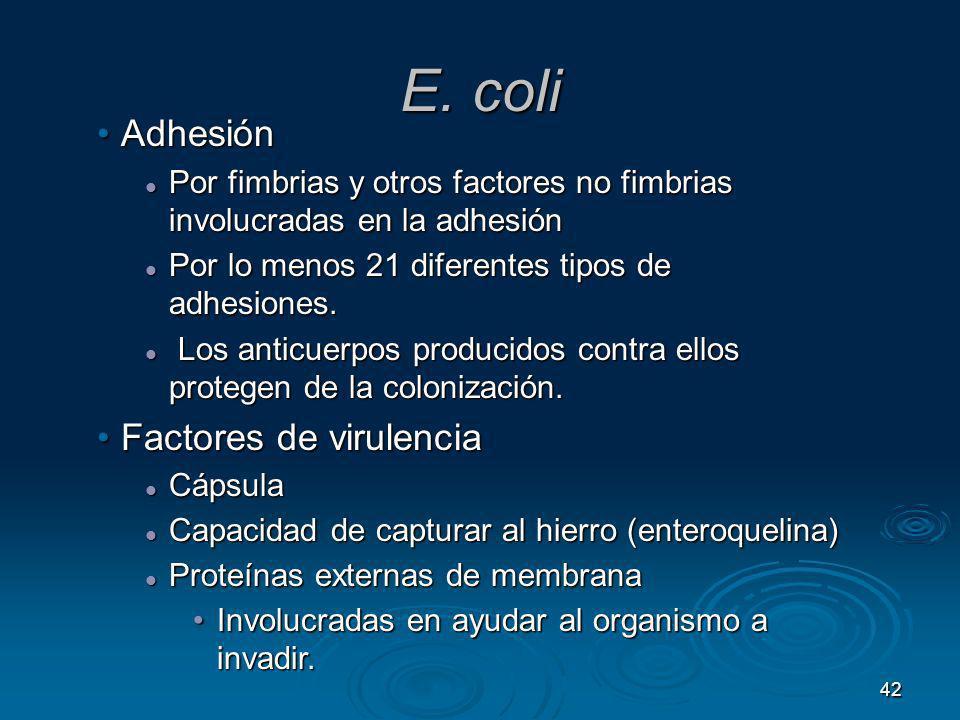 42 E. coli AdhesiónAdhesión Por fimbrias y otros factores no fimbrias involucradas en la adhesión Por fimbrias y otros factores no fimbrias involucrad