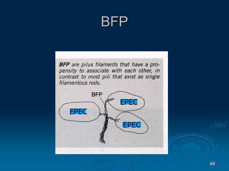 45 BFP EPEC