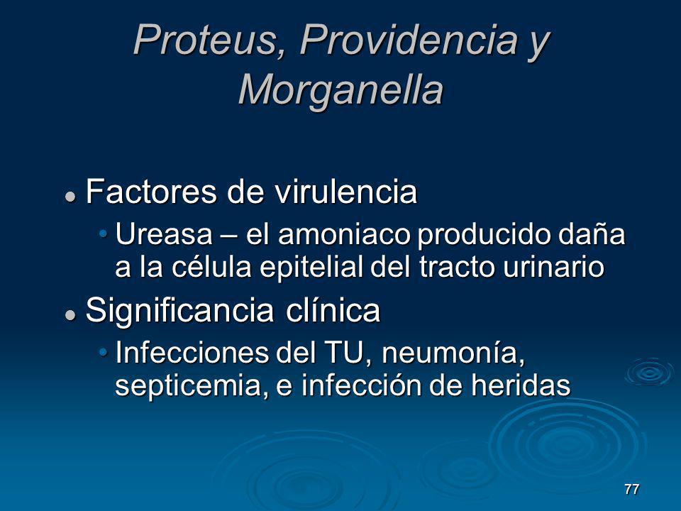 77 Proteus, Providencia y Morganella Factores de virulencia Factores de virulencia Ureasa – el amoniaco producido daña a la célula epitelial del tract