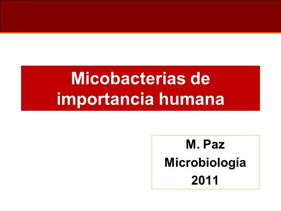 Micobacterias de importancia humana M. Paz Microbiología 2011