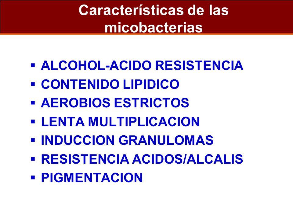 Características de las micobacterias ALCOHOL-ACIDO RESISTENCIA CONTENIDO LIPIDICO AEROBIOS ESTRICTOS LENTA MULTIPLICACION INDUCCION GRANULOMAS RESISTE