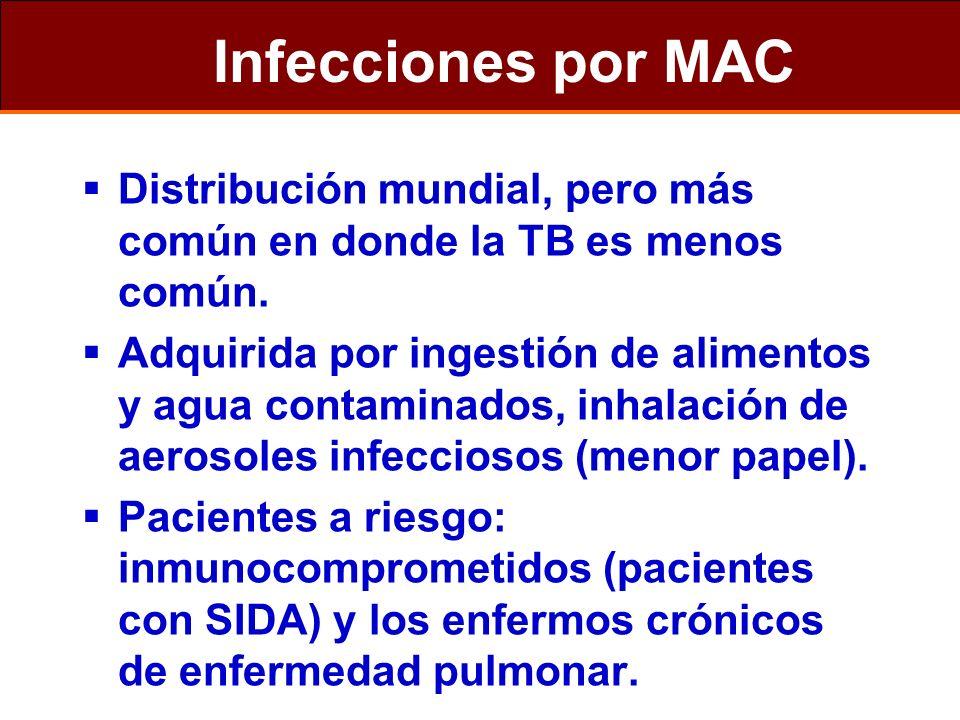 Infecciones por MAC Distribución mundial, pero más común en donde la TB es menos común. Adquirida por ingestión de alimentos y agua contaminados, inha