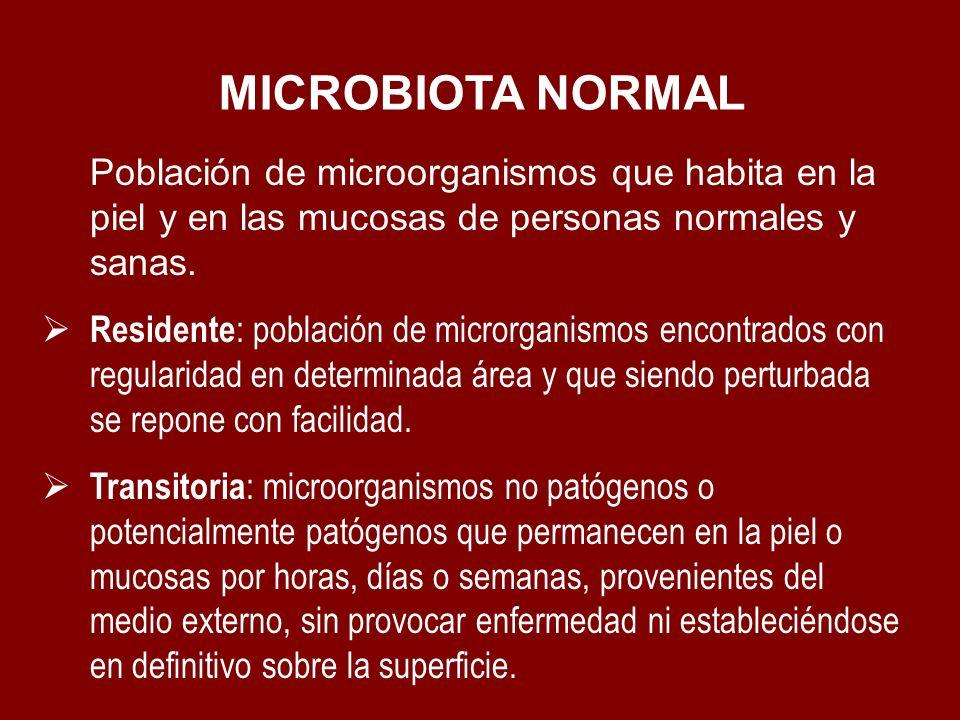 Población de microorganismos que habita en la piel y en las mucosas de personas normales y sanas. Residente : población de microrganismos encontrados