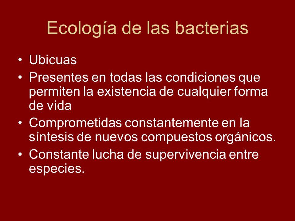 Ecología de las bacterias Ubicuas Presentes en todas las condiciones que permiten la existencia de cualquier forma de vida Comprometidas constantement