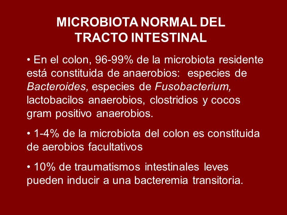 En el colon, 96-99% de la microbiota residente está constituida de anaerobios: especies de Bacteroides, especies de Fusobacterium, lactobacilos anaero