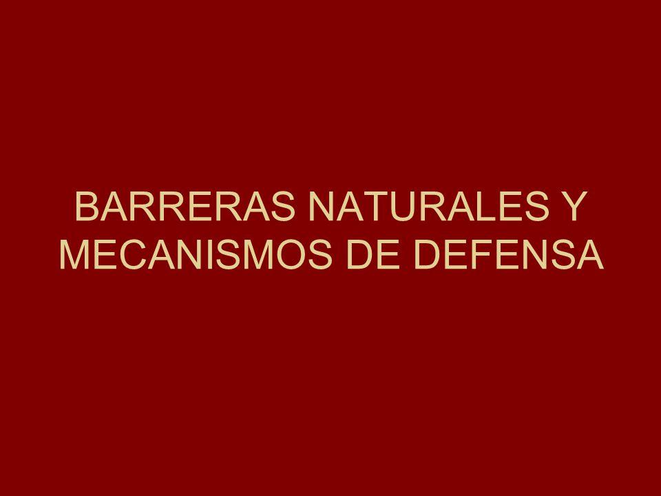 BARRERAS NATURALES Y MECANISMOS DE DEFENSA