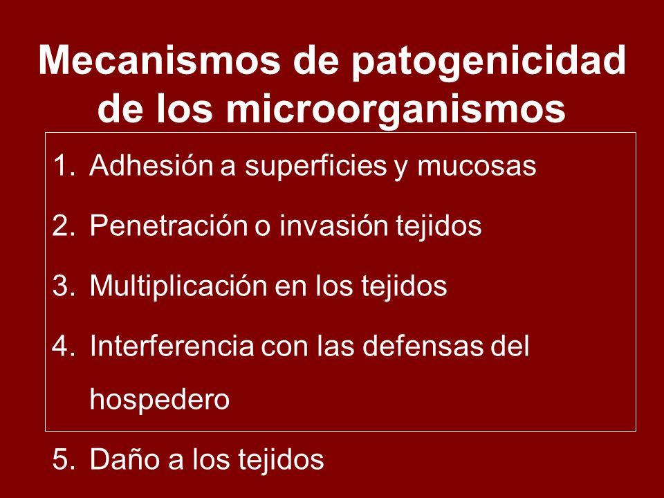 Mecanismos de patogenicidad de los microorganismos 1.Adhesión a superficies y mucosas 2.Penetración o invasión tejidos 3.Multiplicación en los tejidos