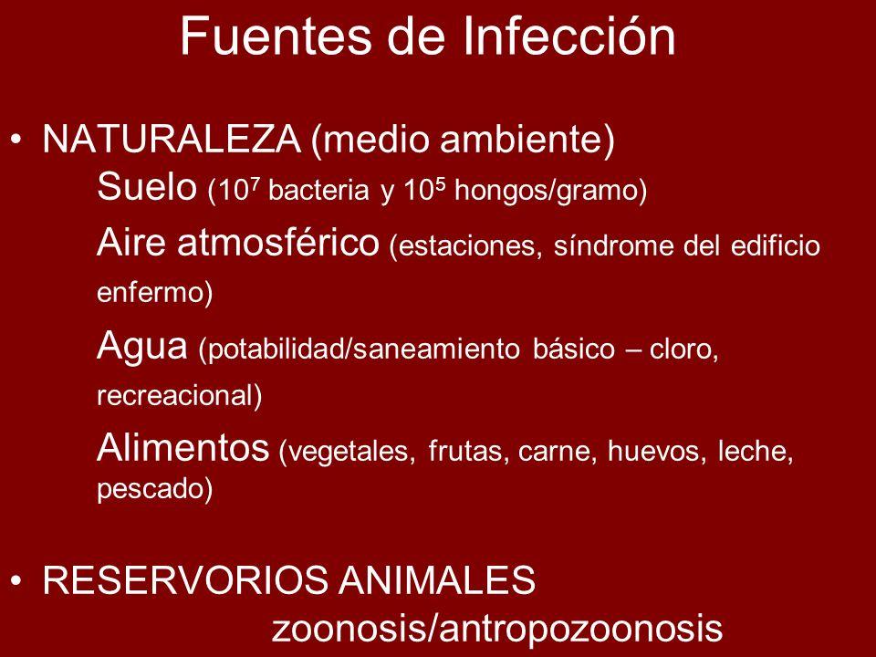 Fuentes de Infección NATURALEZA (medio ambiente) Suelo (10 7 bacteria y 10 5 hongos/gramo) Aire atmosférico (estaciones, síndrome del edificio enfermo