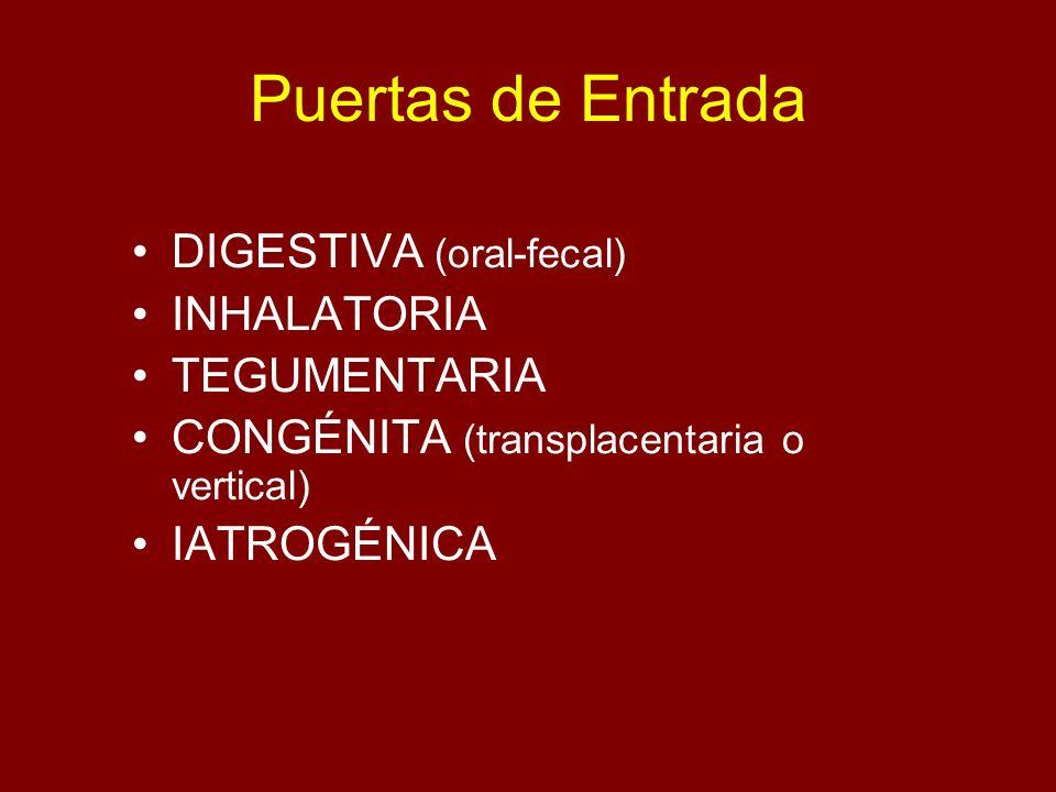 Puertas de Entrada DIGESTIVA (oral-fecal) INHALATORIA TEGUMENTARIA CONGÉNITA (transplacentaria o vertical) IATROGÉNICA