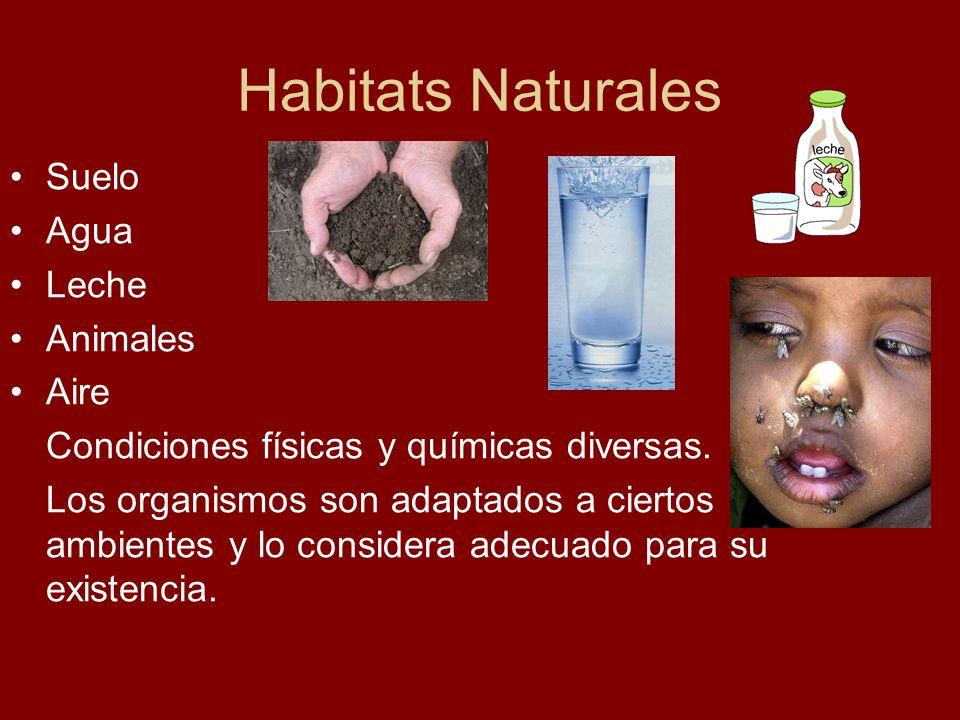 Habitats Naturales Suelo Agua Leche Animales Aire Condiciones físicas y químicas diversas. Los organismos son adaptados a ciertos ambientes y lo consi