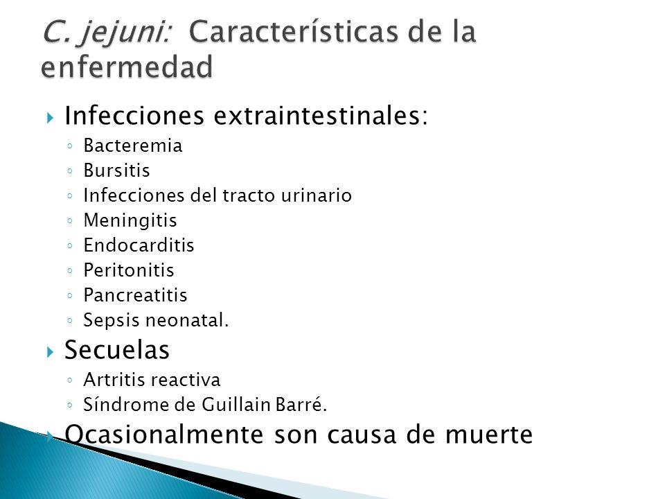 Infecciones extraintestinales: Bacteremia Bursitis Infecciones del tracto urinario Meningitis Endocarditis Peritonitis Pancreatitis Sepsis neonatal. S