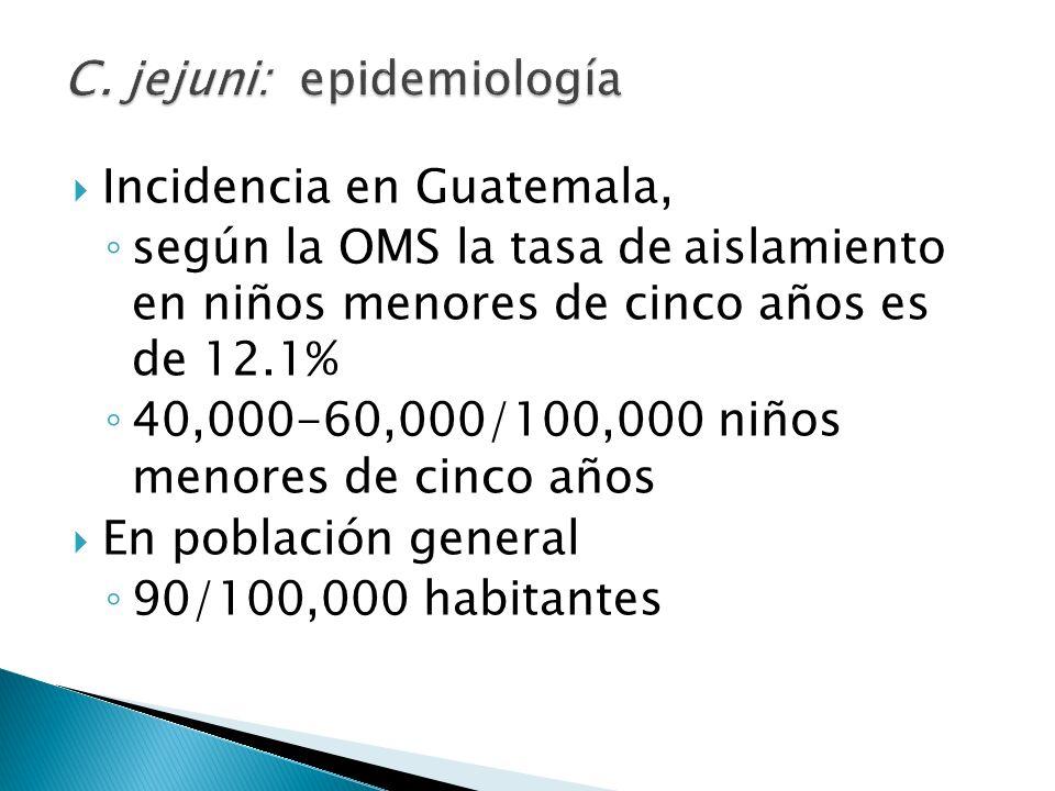 Incidencia en Guatemala, según la OMS la tasa de aislamiento en niños menores de cinco años es de 12.1% 40,000-60,000/100,000 niños menores de cinco a