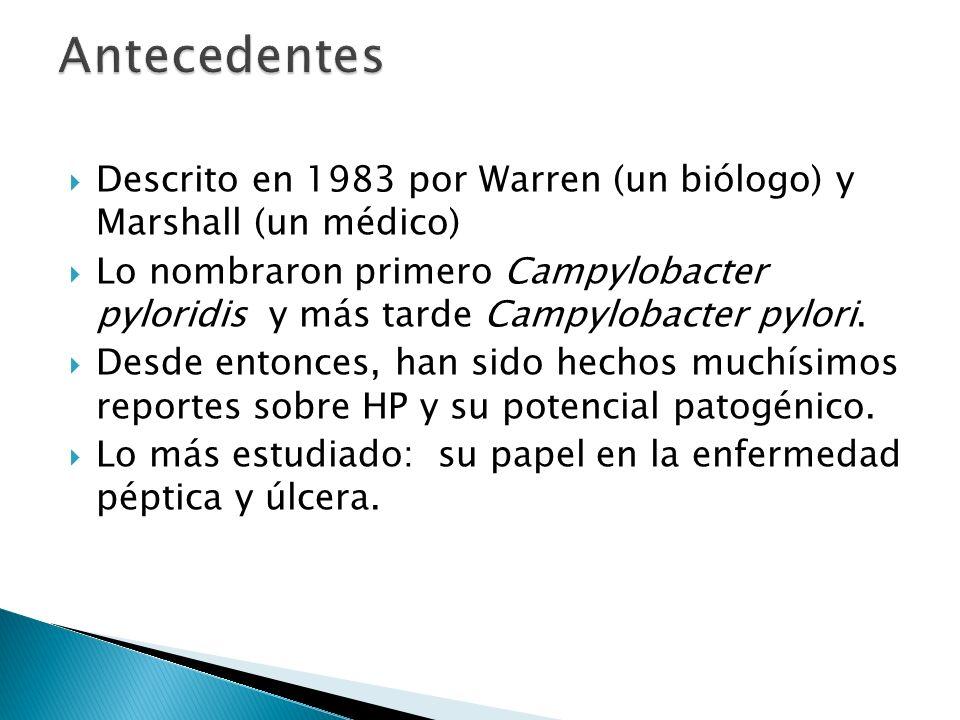 Descrito en 1983 por Warren (un biólogo) y Marshall (un médico) Lo nombraron primero Campylobacter pyloridis y más tarde Campylobacter pylori. Desde e