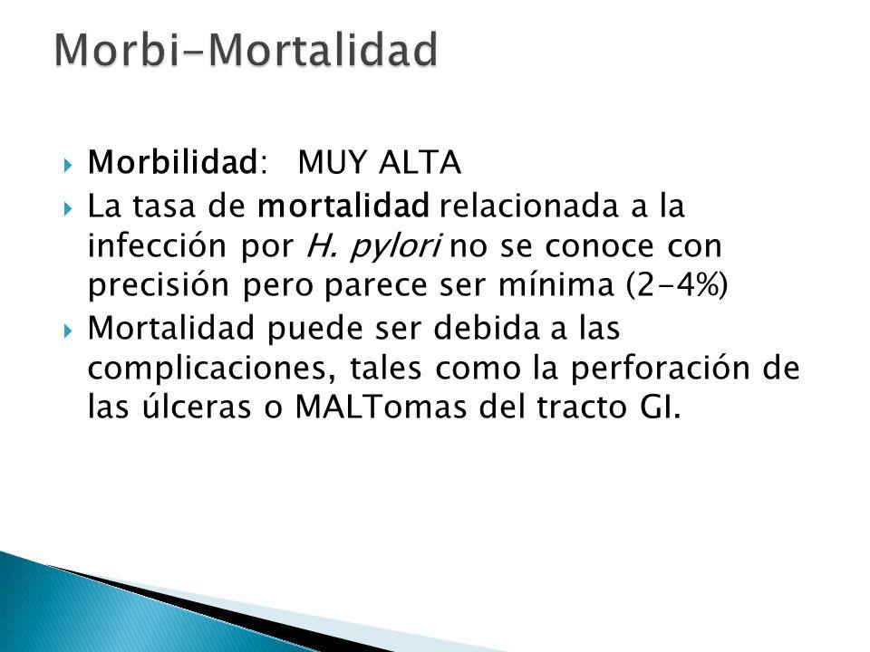 Morbilidad: MUY ALTA La tasa de mortalidad relacionada a la infección por H. pylori no se conoce con precisión pero parece ser mínima (2-4%) Mortalida