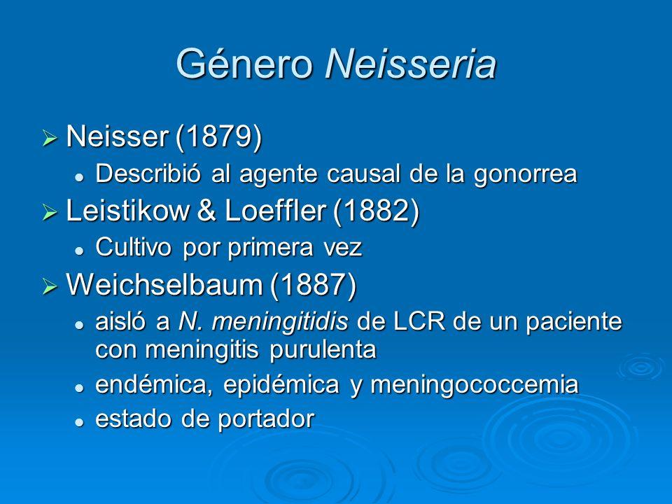 Género Neisseria Neisser (1879) Neisser (1879) Describió al agente causal de la gonorrea Describió al agente causal de la gonorrea Leistikow & Loeffle