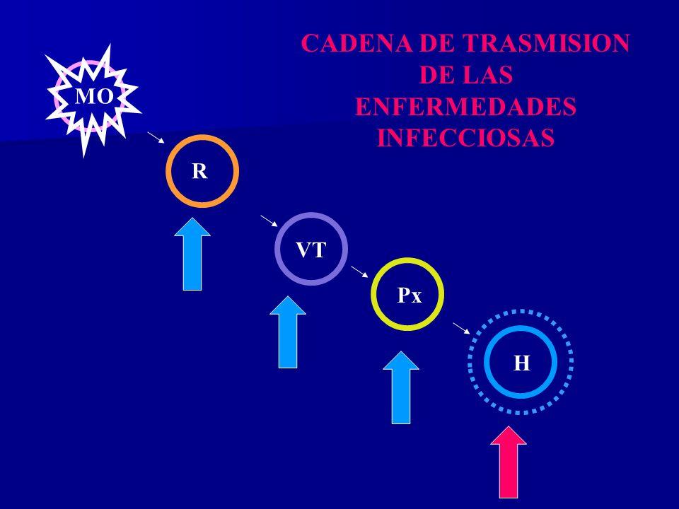 MO R VT Px H CADENA DE TRASMISION DE LAS ENFERMEDADES INFECCIOSAS