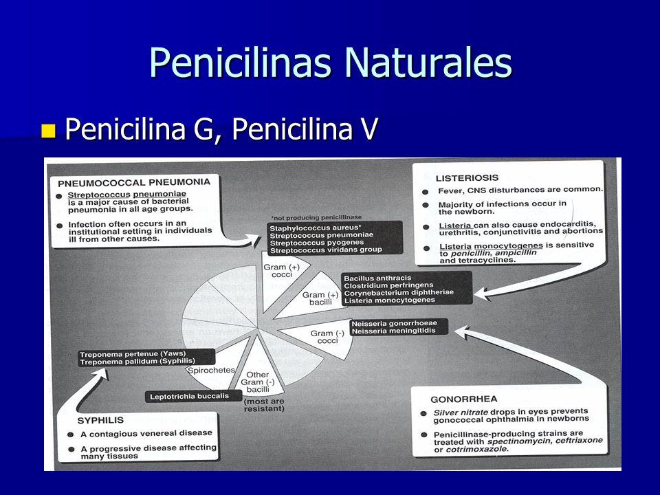 Penicilinas Naturales Penicilina G, Penicilina V Penicilina G, Penicilina V