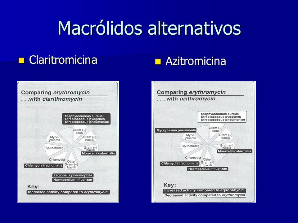Macrólidos alternativos Claritromicina Claritromicina Azitromicina Azitromicina