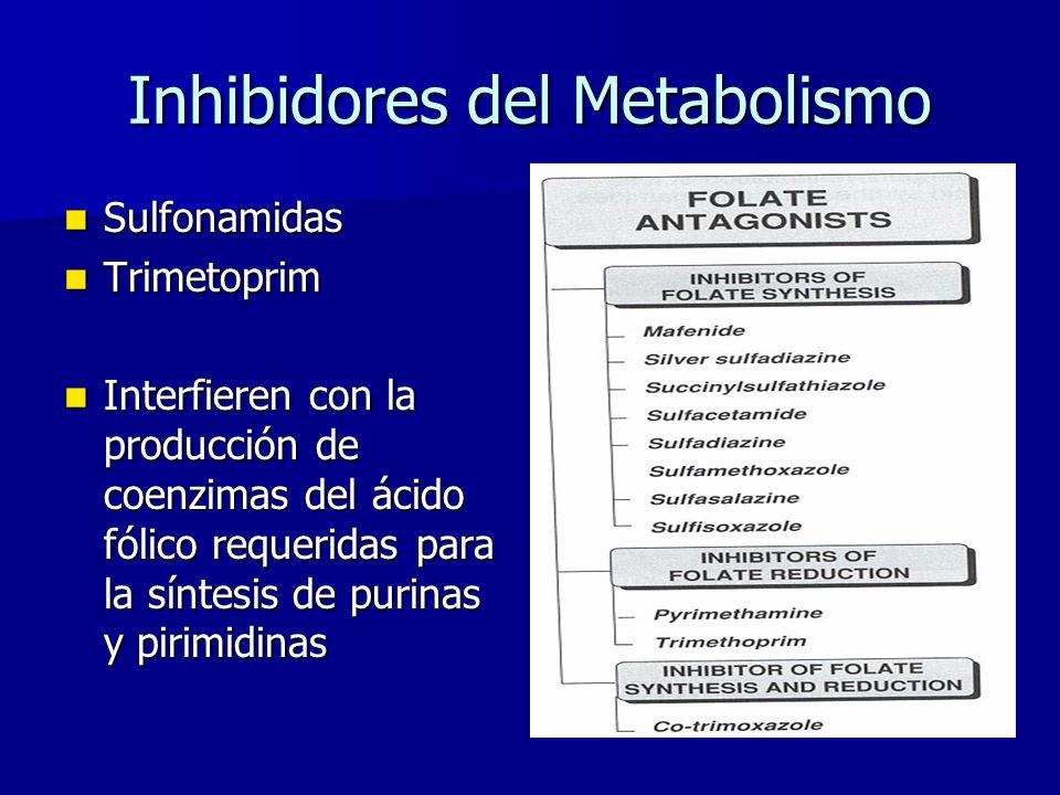 Inhibidores del Metabolismo Sulfonamidas Sulfonamidas Trimetoprim Trimetoprim Interfieren con la producción de coenzimas del ácido fólico requeridas para la síntesis de purinas y pirimidinas Interfieren con la producción de coenzimas del ácido fólico requeridas para la síntesis de purinas y pirimidinas