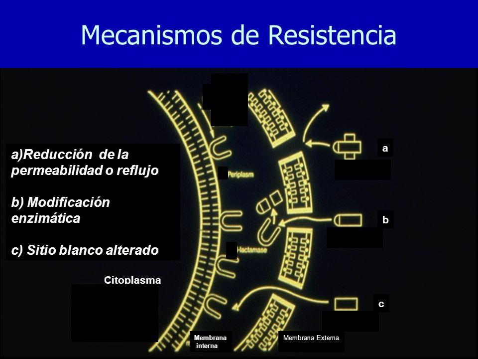 Membrana Externa a)Reducción de la permeabilidad o reflujo b) Modificación enzimática c) Sitio blanco alterado Membrana interna a b c Citoplasma Mecanismos de Resistencia