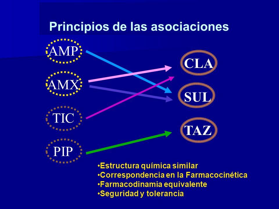 AMP AMX TIC PIP CLA SUL TAZ Principios de las asociaciones Estructura química similar Correspondencia en la Farmacocinética Farmacodinamia equivalente Seguridad y tolerancia