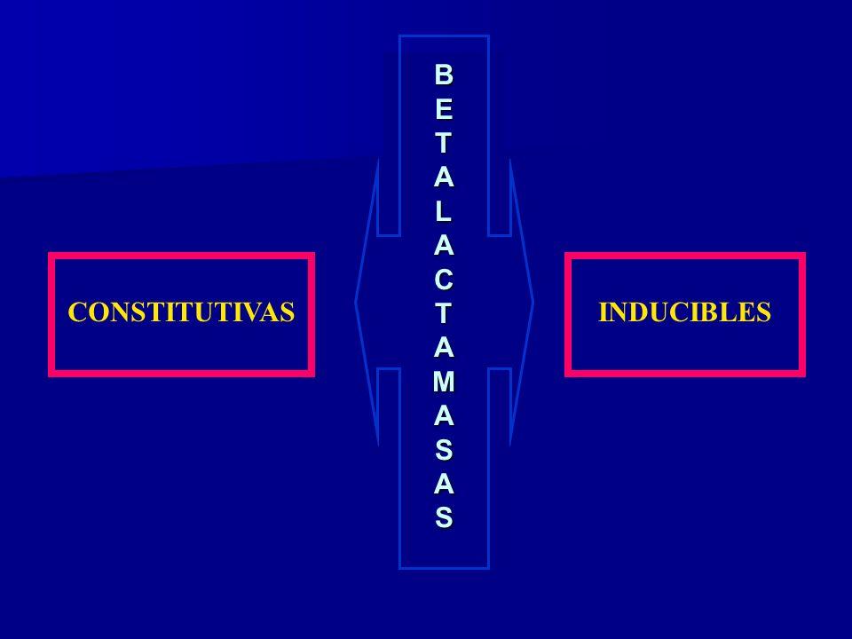 BETALACTAMASAS INDUCIBLESCONSTITUTIVAS