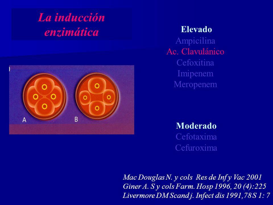 La inducción enzimática Elevado Ampicilina Ac.