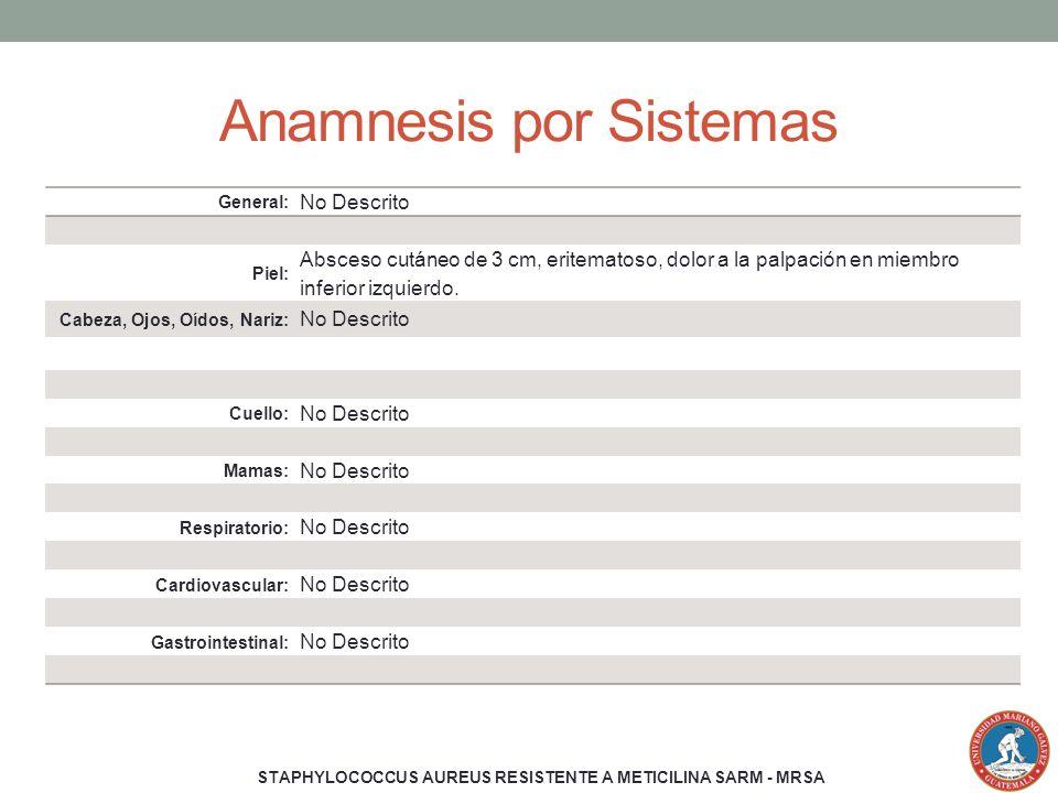 Anamnesis por Sistemas General: No Descrito Piel: Absceso cutáneo de 3 cm, eritematoso, dolor a la palpación en miembro inferior izquierdo. Cabeza, Oj