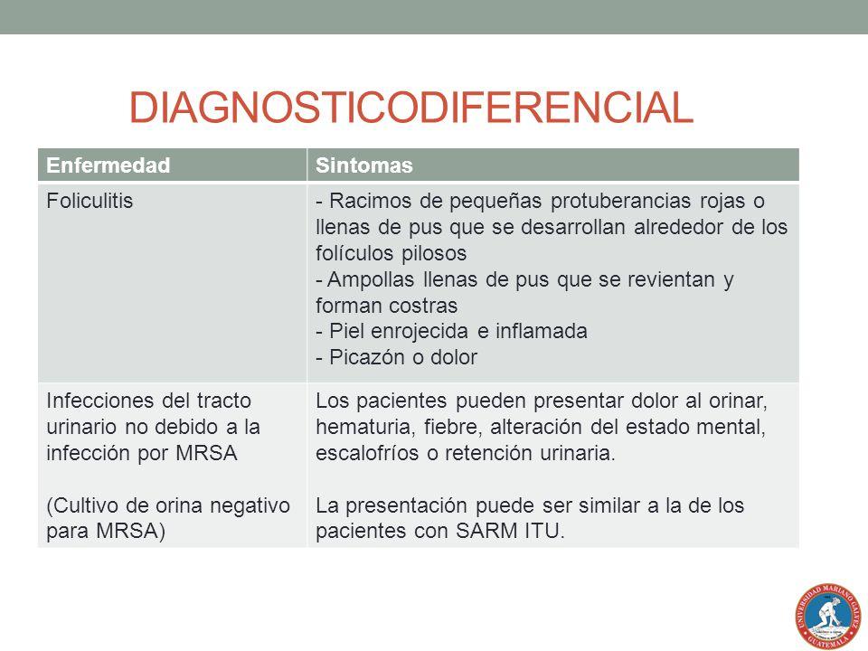 EnfermedadSintomas Foliculitis- Racimos de pequeñas protuberancias rojas o llenas de pus que se desarrollan alrededor de los folículos pilosos - Ampol