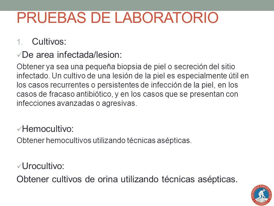 PRUEBAS DE LABORATORIO 1. Cultivos: De area infectada/lesion: Obtener ya sea una pequeña biopsia de piel o secreción del sitio infectado. Un cultivo d