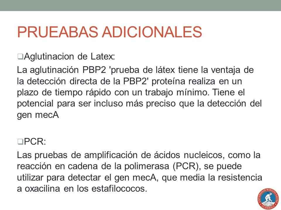 PRUEABAS ADICIONALES Aglutinacion de Latex: La aglutinación PBP2 'prueba de látex tiene la ventaja de la detección directa de la PBP2' proteína realiz