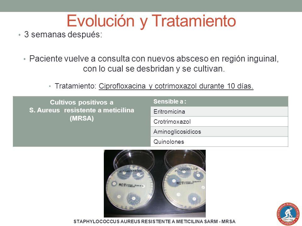 Evolución y Tratamiento 3 semanas después: Paciente vuelve a consulta con nuevos absceso en región inguinal, con lo cual se desbridan y se cultivan. T
