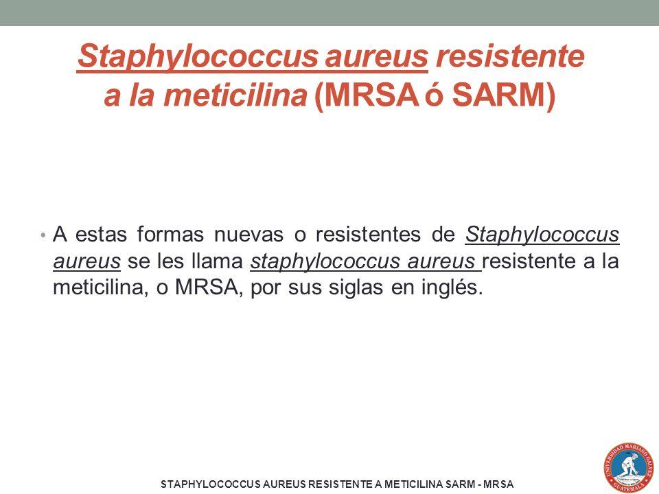 Staphylococcus aureus resistente a la meticilina (MRSA ó SARM) A estas formas nuevas o resistentes de Staphylococcus aureus se les llama staphylococcu