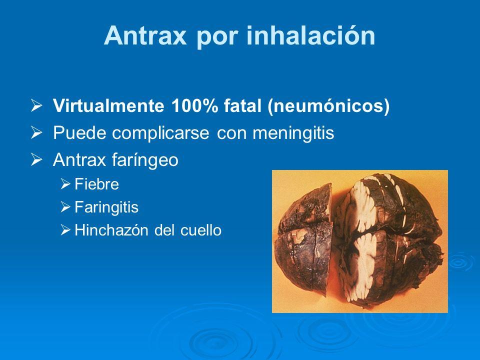 Antrax por inhalación Virtualmente 100% fatal (neumónicos) Puede complicarse con meningitis Antrax faríngeo Fiebre Faringitis Hinchazón del cuello