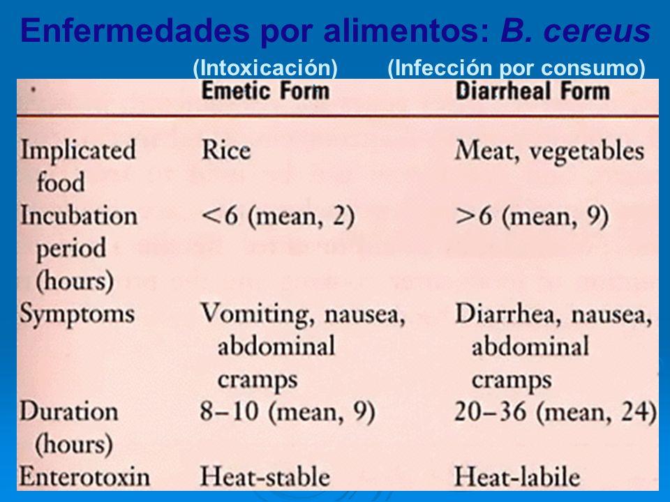 Enfermedades por alimentos: B. cereus (Intoxicación)(Infección por consumo)