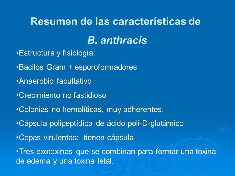 Resumen de las características de B. anthracis Estructura y fisiología: Bacilos Gram + esporoformadores Anaerobio facultativo Crecimiento no fastidios