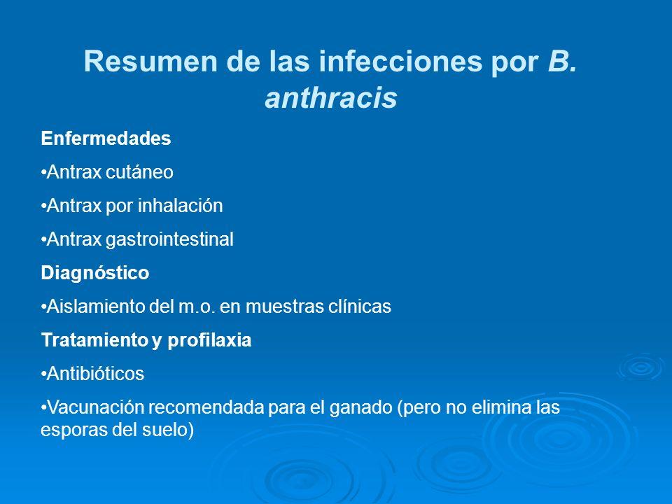 Resumen de las infecciones por B. anthracis Enfermedades Antrax cutáneo Antrax por inhalación Antrax gastrointestinal Diagnóstico Aislamiento del m.o.