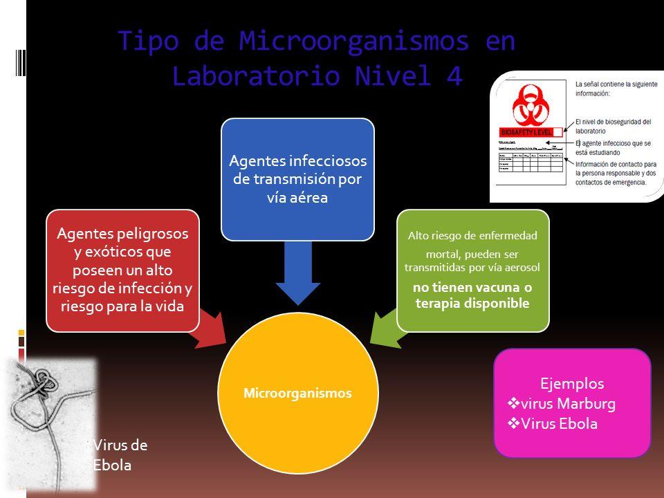 Tipo de Microorganismos en Laboratorio Nivel 4 Microorganismos Agentes peligrosos y exóticos que poseen un alto riesgo de infección y riesgo para la v