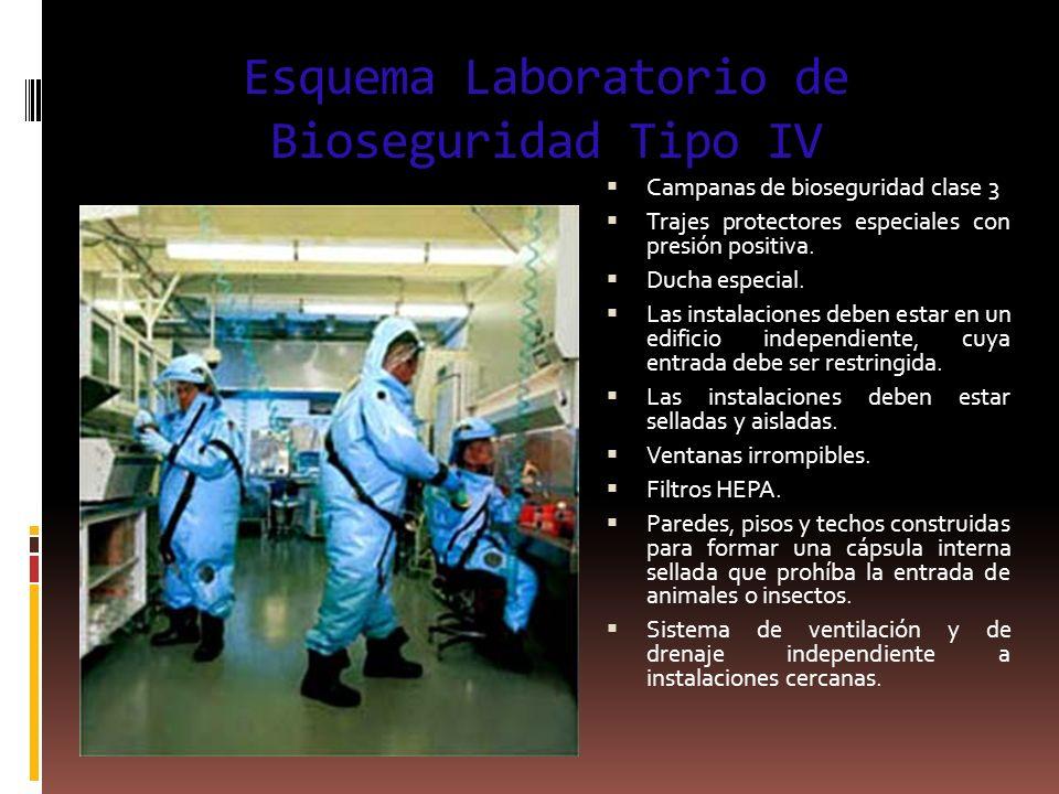 Esquema Laboratorio de Bioseguridad Tipo IV Campanas de bioseguridad clase 3 Trajes protectores especiales con presión positiva. Ducha especial. Las i