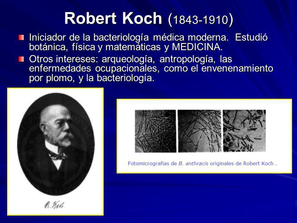 Robert Koch ( 1843-1910 ) Iniciador de la bacteriología médica moderna. Estudió botánica, física y matemáticas y MEDICINA. Otros intereses: arqueologí