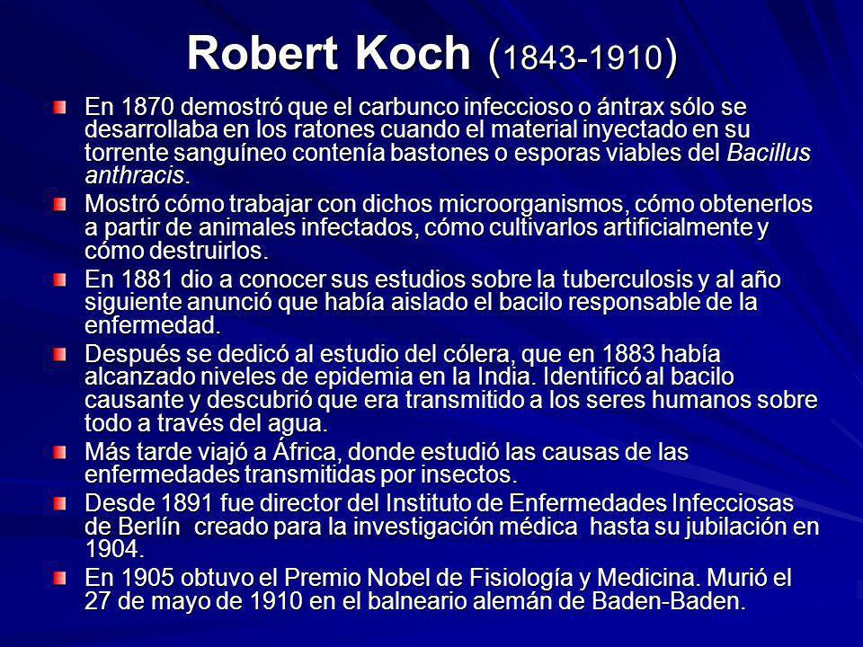 Robert Koch ( 1843-1910 ) En 1870 demostró que el carbunco infeccioso o ántrax sólo se desarrollaba en los ratones cuando el material inyectado en su