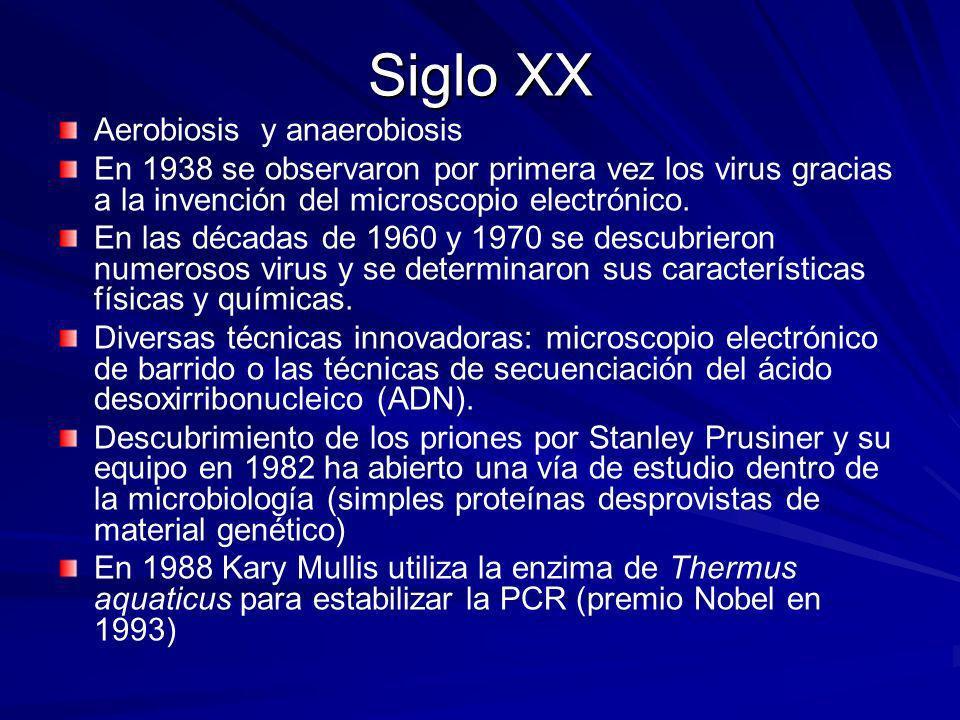 Siglo XX Aerobiosis y anaerobiosis En 1938 se observaron por primera vez los virus gracias a la invención del microscopio electrónico. En las décadas