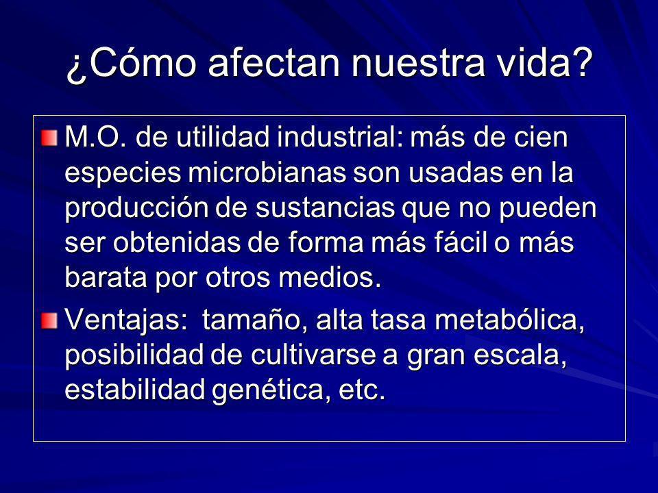 ¿Cómo afectan nuestra vida? M.O. de utilidad industrial: más de cien especies microbianas son usadas en la producción de sustancias que no pueden ser
